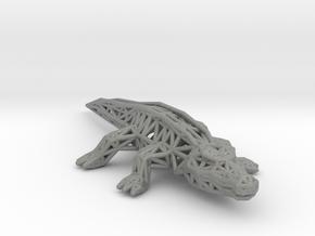 Nile Crocodile in Gray PA12