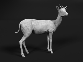 Thomson's Gazelle 1:9 Standing Female in White Natural Versatile Plastic