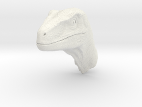 raptorkopfclosedmouth in White Natural Versatile Plastic