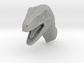 Velociraptor Head in Aluminum