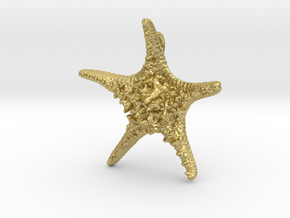 Knobby Starfish Pendant (Small, Solid) in Natural Brass