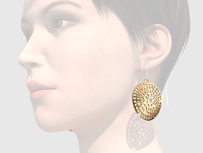 Radiolarian earrings in Polished Brass