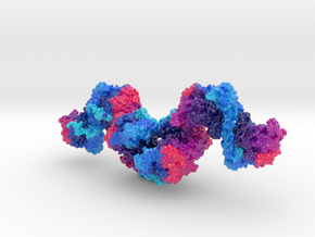 Purple Acid Phosphatase (Large) in Glossy Full Color Sandstone