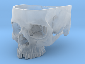 Human Skull Bowl (Life Size) in Smooth Fine Detail Plastic