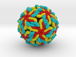 ''Breathing'' Dengue Virus in Full Color Sandstone