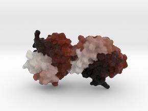 Fel-D1 Cat Allergen in Natural Full Color Sandstone