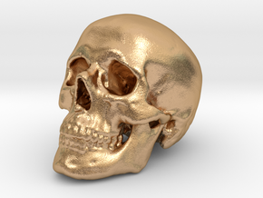 Skull Scientific 44 mm in Natural Bronze