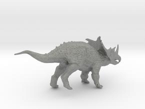Chasmosaurus in Gray Professional Plastic: Small