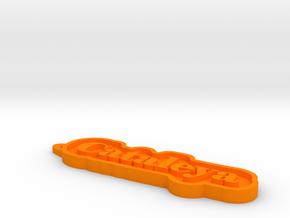 Cataleya Name Tag in Orange Processed Versatile Plastic