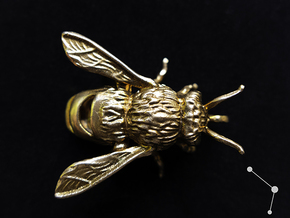 Honey Bee - Pendant - Vessels in Natural Bronze