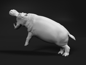Hippopotamus 1:48 Fighting Males split part 2/2 in White Natural Versatile Plastic