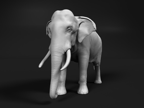 Indian Elephant 1:48 Standing Male in White Natural Versatile Plastic