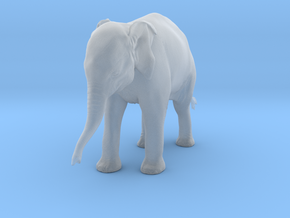 Indian Elephant 1:6 Standing Female Calf in Smooth Fine Detail Plastic