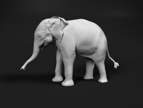 Indian Elephant 1:16 Standing Female Calf in White Natural Versatile Plastic