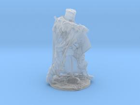 Regurgitated Knight   in Smoothest Fine Detail Plastic: Medium