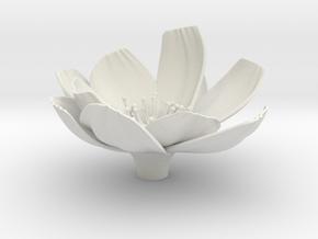 Flower in White Natural Versatile Plastic
