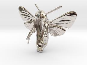 Hummingbird Hawk-Moth Pendant (hollow version) in Platinum