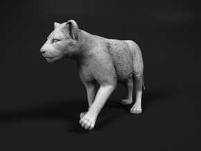 Lion 1:76 Walking Cub in Smooth Fine Detail Plastic
