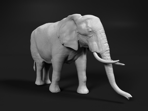 African Bush Elephant 1:32 Walking Female in White Natural Versatile Plastic
