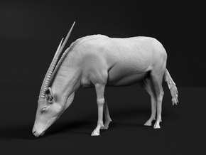 Gemsbok 1:64 Drinking Female in Smooth Fine Detail Plastic