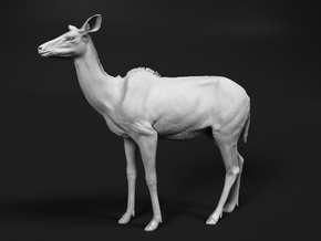 Greater Kudu 1:36 Chewing Female in White Natural Versatile Plastic