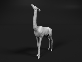 Gerenuk 1:32 Female feeding on four legs in Smooth Fine Detail Plastic