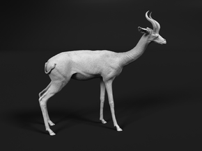 Gerenuk 1:22 Standing Male in White Natural Versatile Plastic