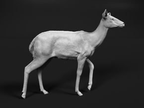 Nyala 1:6 Walking Female in White Natural Versatile Plastic