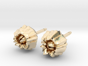 Barnacle Earrings - Nature Jewelry in 14K Yellow Gold
