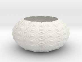 Sea Urchin Bowl in White Natural Versatile Plastic