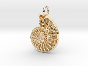 Ammonite Pendant - Fossil Jewelry in 14K Yellow Gold