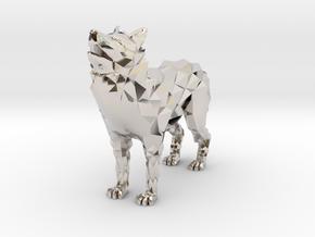 Timber wolf in Platinum