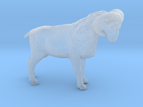 S Scale (1:64) Bighorn Sheep Ram in Smooth Fine Detail Plastic