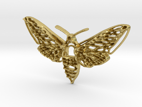 Hawkmoth in Natural Brass