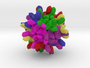 Penaeus vannamei Nodavirus in Natural Full Color Sandstone