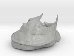 Trilobite - Harpes Perriradiatus in Aluminum