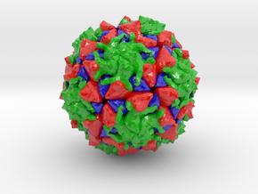 Polio Virus (Large) in Glossy Full Color Sandstone