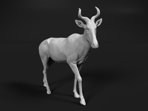 Coke's Hartebeest 1:12 Walking Male in White Natural Versatile Plastic