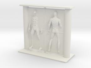 Printle Visions Mirror - H2639 - 1/24 in White Natural Versatile Plastic
