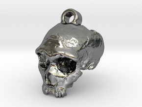Neanderthal skull in Polished Silver