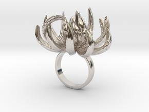Fhio - Bjou Designs (final) in Rhodium Plated Brass
