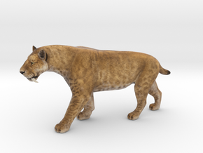 Smilodon Saber-Toothed Cat 1/20 Scale Model in Natural Full Color Sandstone