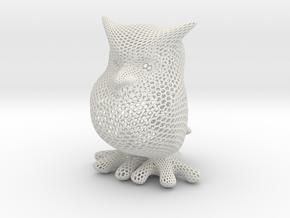 Owl - hexagonal in White Natural Versatile Plastic