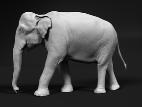 Indian Elephant 1:120 Walking Female in Smooth Fine Detail Plastic