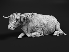 Highland Cattle 1:45 Lying Female in Smooth Fine Detail Plastic