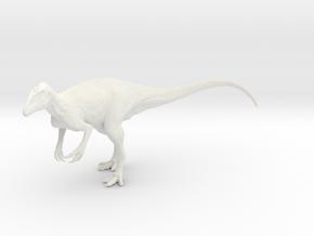 Megaraptor namunhuaiquii in White Natural Versatile Plastic