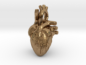 Anatomical Heart Pendant in Raw Brass