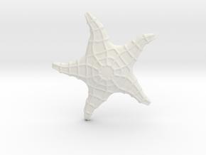 Starfish in White Natural Versatile Plastic