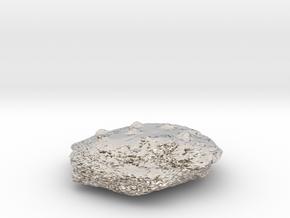 Cookie in Platinum