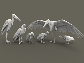 Scavenger Birds Set 1:160 six different pieces in Smooth Fine Detail Plastic